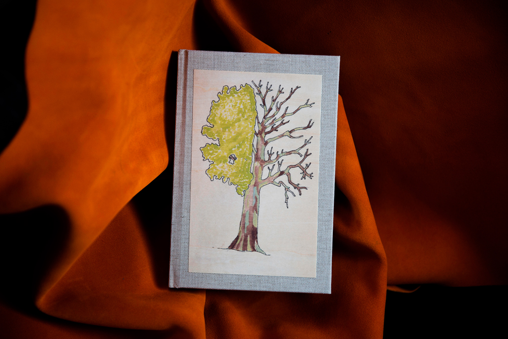 cartotecnica-alberi